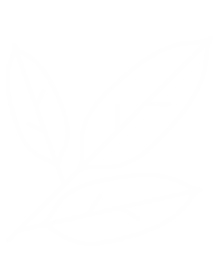 Bay Leaves Icon White